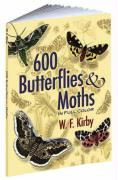600 Butterflies & Moths in Full Color