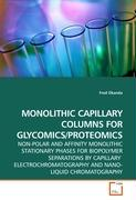 MONOLITHIC CAPILLARY COLUMNS FOR GLYCOMICS/PROTEOMICS