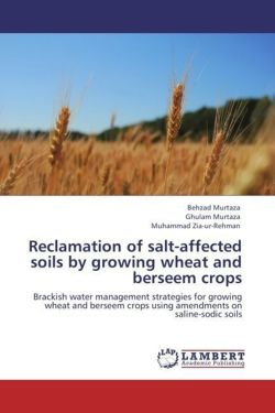 Reclamation of salt-affected soils by growing wheat and berseem crops - Murtaza, Behzad / Murtaza, Ghulam / Zia-ur-Rehman, Muhammad