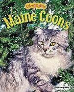 Maine Coons: Super Big - White, Nancy