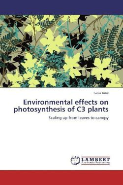 Environmental effects on photosynthesis of C3 plants