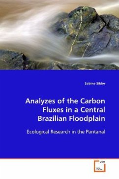 Analyzes of the Carbon Fluxes in a Central Brazilian Floodplain - Sibler, Sabine