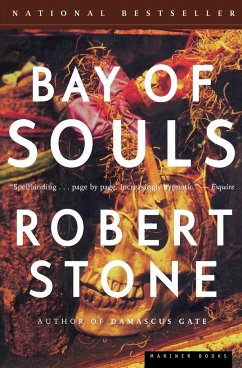 Bay of Souls - Stone, Robert