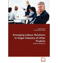 Emerging Labour Relations in Sugar Industry of Uttar Pradesh - Qamrul Islam