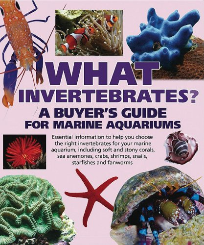 What Invertebrates?: A Buyer's Guide for Marine Aquariums (What Pet? Books) - Tristan Lougher