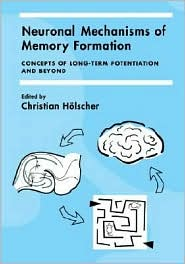 Neuronal Mechanisms of Memory Formation: Concepts of Long-term Potentiation and Beyond - Christian Holscher, Holscher Christian (Editor)