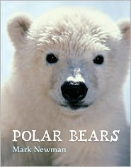 Polar Bears - Mark Newman