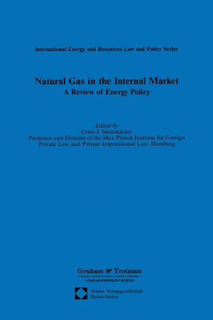 Natural Gas in the Internal Market: A Review of Energy Policy - Ernst Mestmacker (Editor)