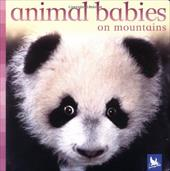 Animal Babies on Mountains - Kingfisher Books