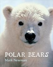 Polar Bears - Newman, Mark / Newman, Mark