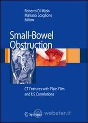 Small-bowel obstruction: CT features with plain film and US correlations
