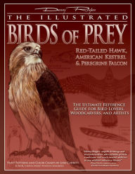Illustrated Birds of Prey: Red-Tailed Hawk, American Kestrel & Peregrine Falcon: The Ultimate Reference Guide for Bird Lovers, Artists, and Woodcarvers - Denny Rogers