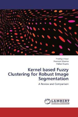 Kernel based Fuzzy Clustering for Robust Image Segmentation