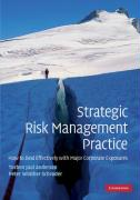 Strategic Risk Management Practice: How to Deal Effectively with Major Corporate Exposures