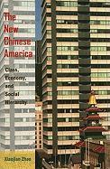 The New Chinese America: Class, Economy, and Social Hierarchy - Zhao, Xiaojian