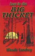 Lost in the Big Thicket: A Mystery and Adventure in the Big Thicket of Texas - Landrey, Wanda A.