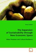 The Expansion of Sustainability through New Economic Space - Lambert Simon