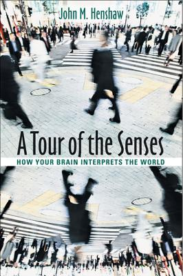 A tour of the senses: how your brain interprets the world
