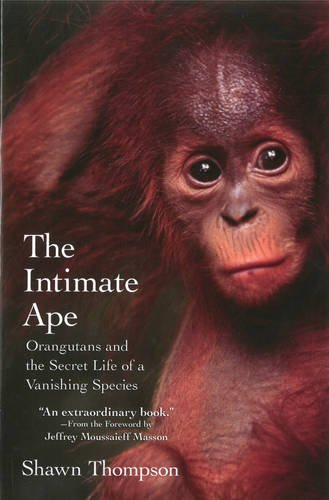 The Intimate Ape: Orangutans and the Secret Life of a Vanishing Species - Shawn Thompson