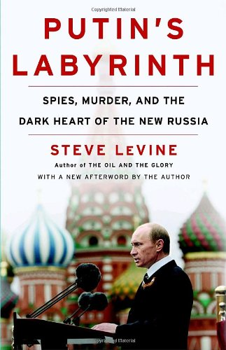 Putin's Labyrinth: Spies, Murder, and the Dark Heart of the New Russia - Steve Levine